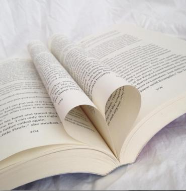 Prefiero la literatura a la novela