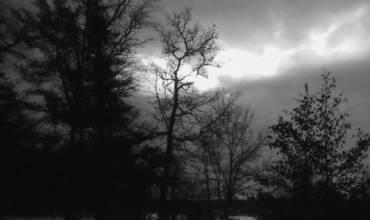 Viaje al fin de la noche